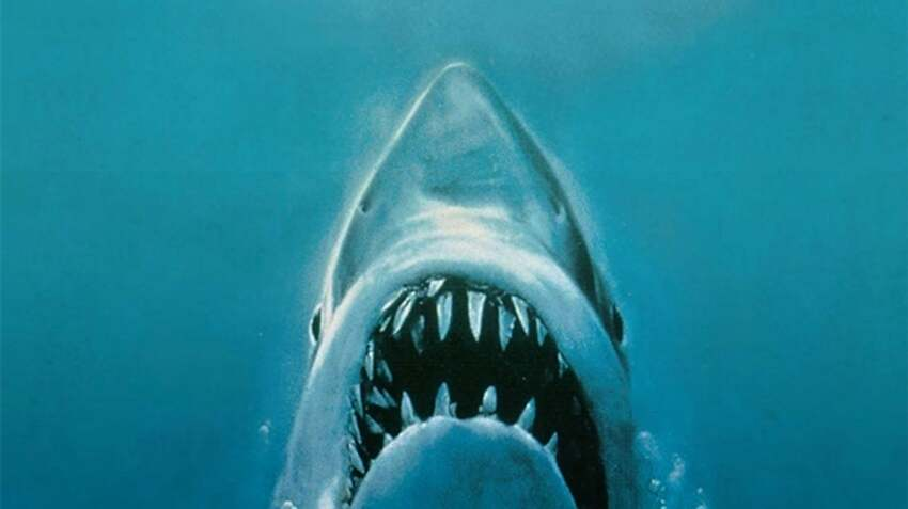 10-best-board-games-based-on-movies-jaws.jpg