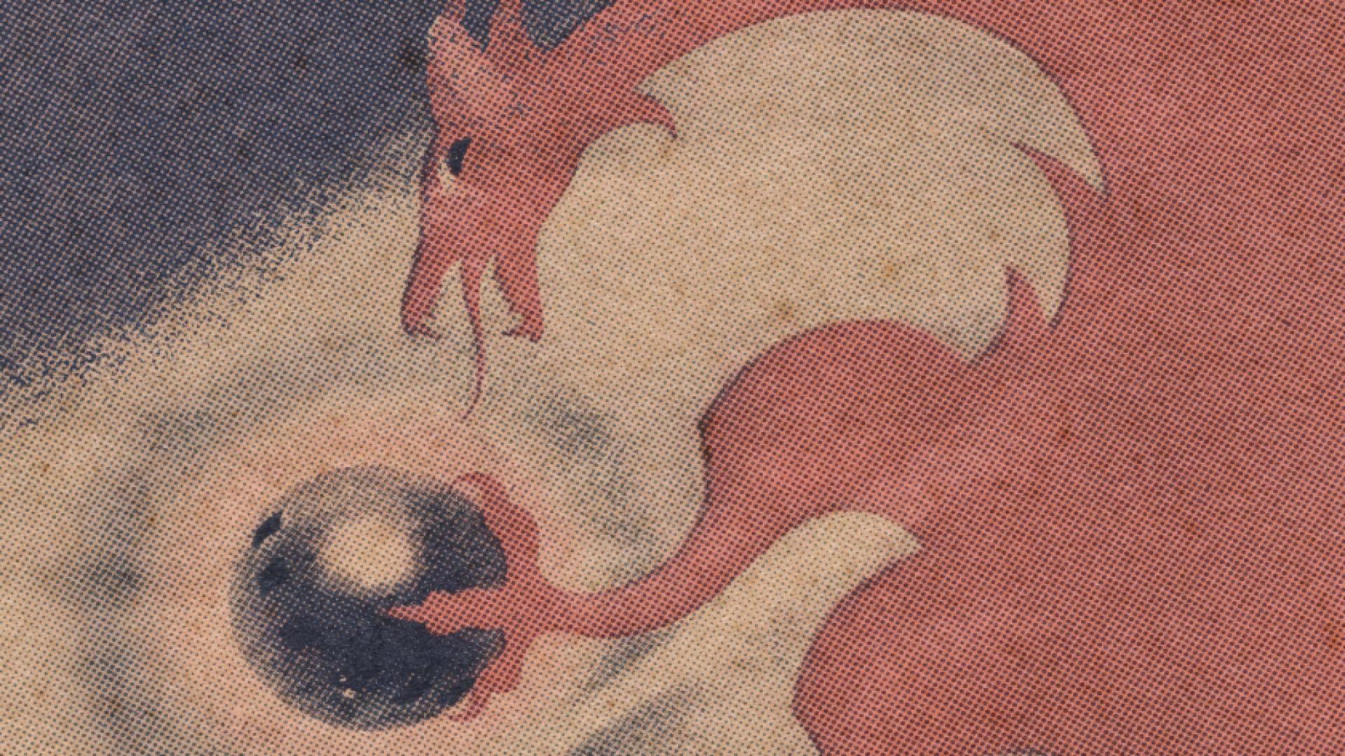 a dragon game header art.png