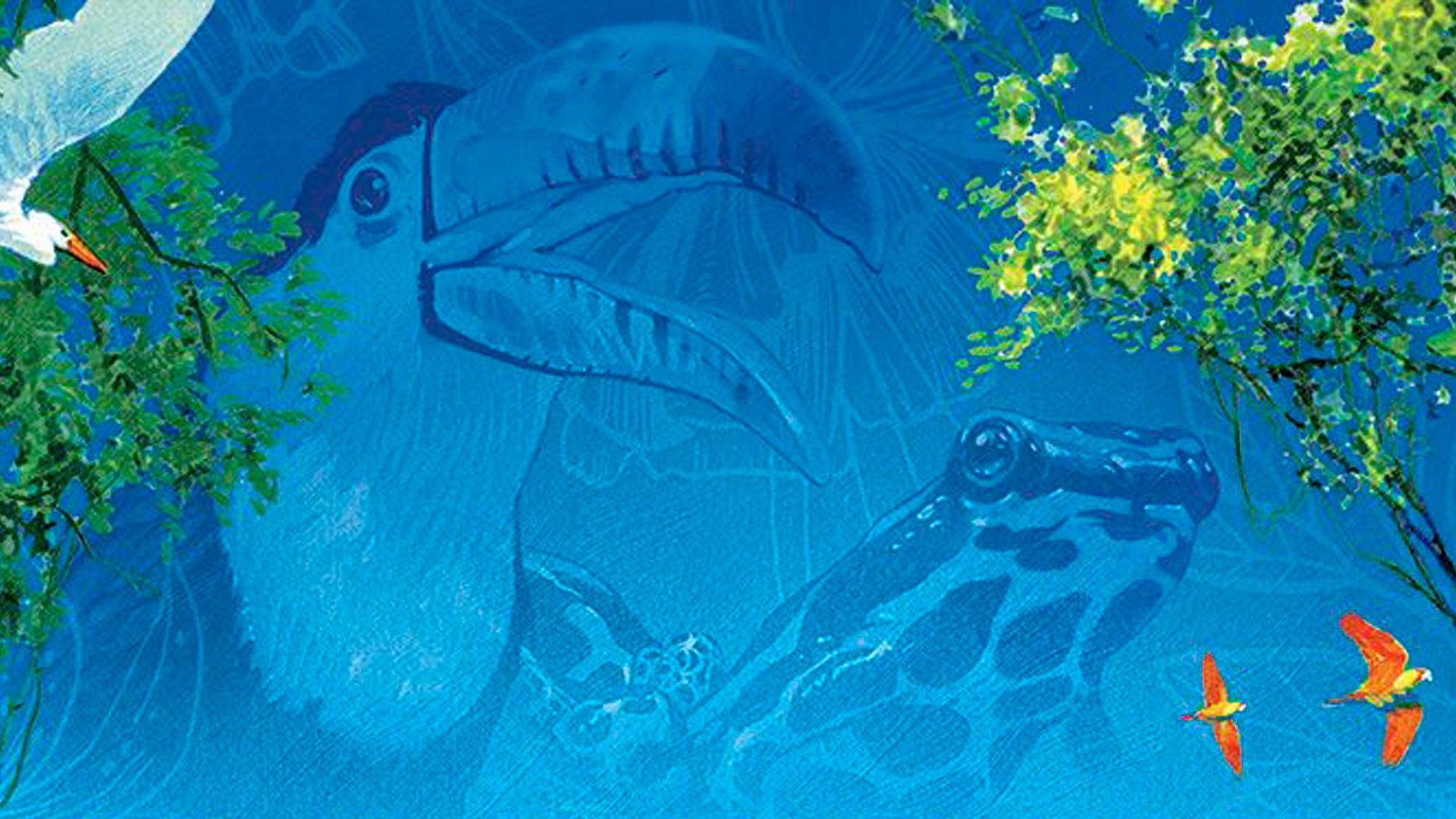 Canopy board game artwork