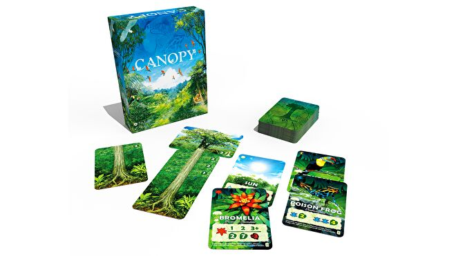 Canopy board game layout