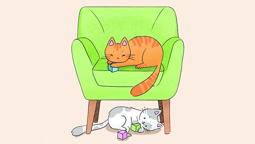 house-of-cats-game-artwork.jpg