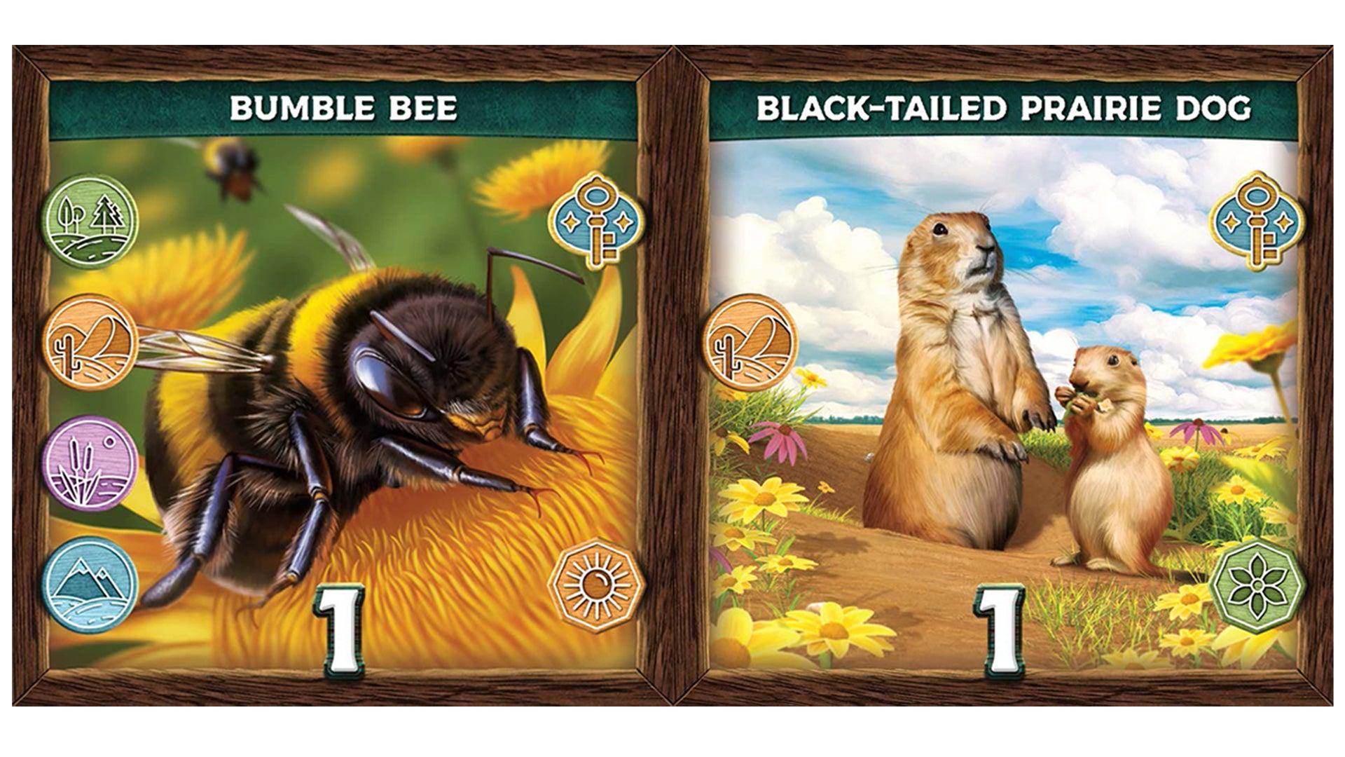 Keystone: North America cards 2