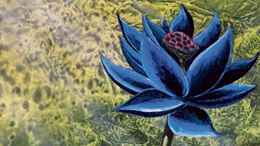 Magic: The Gathering Black Lotus card artwork