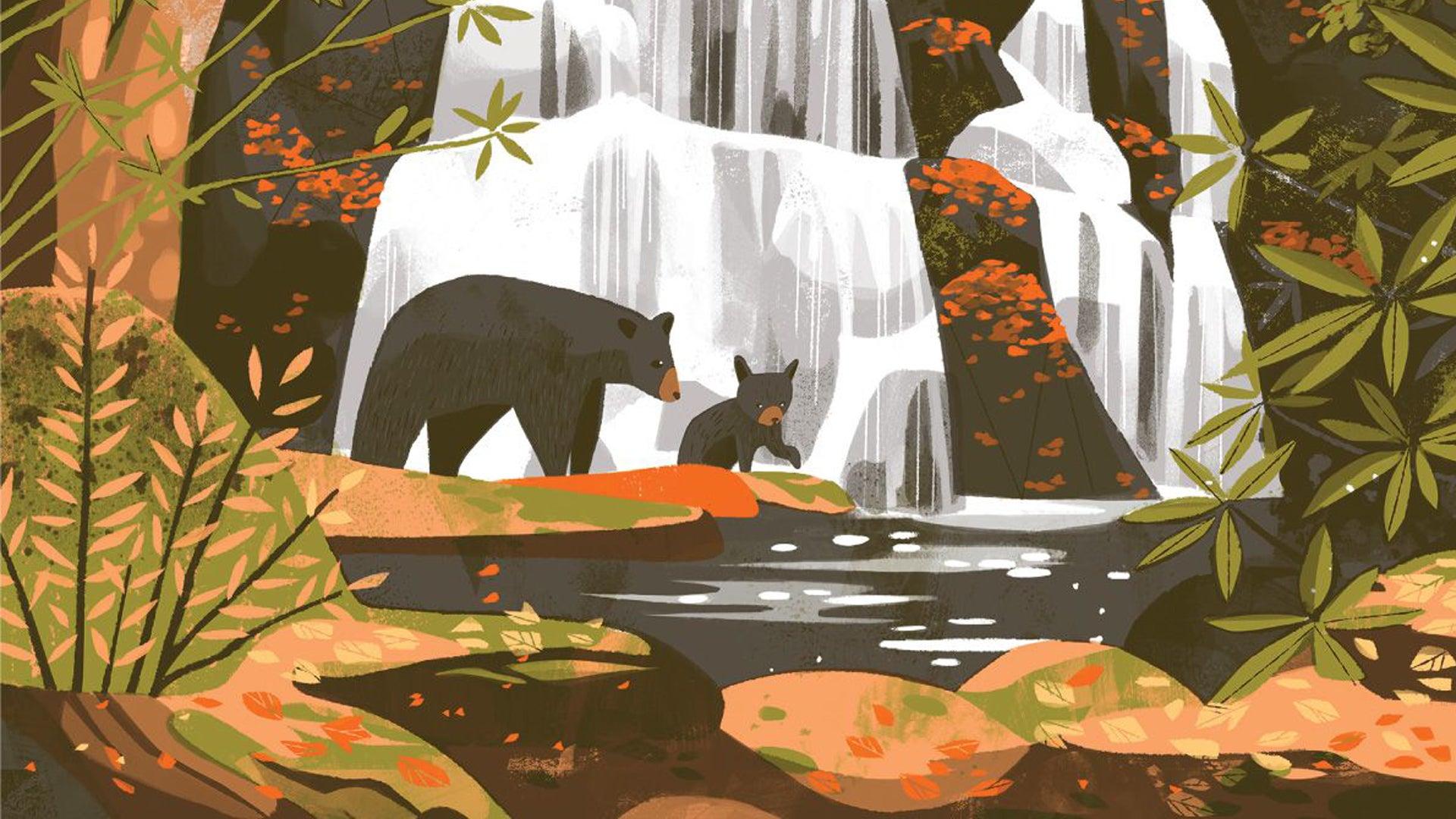 Parks board game artwork