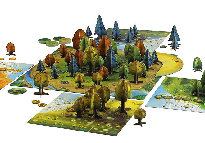 Photosynthesis board game layout