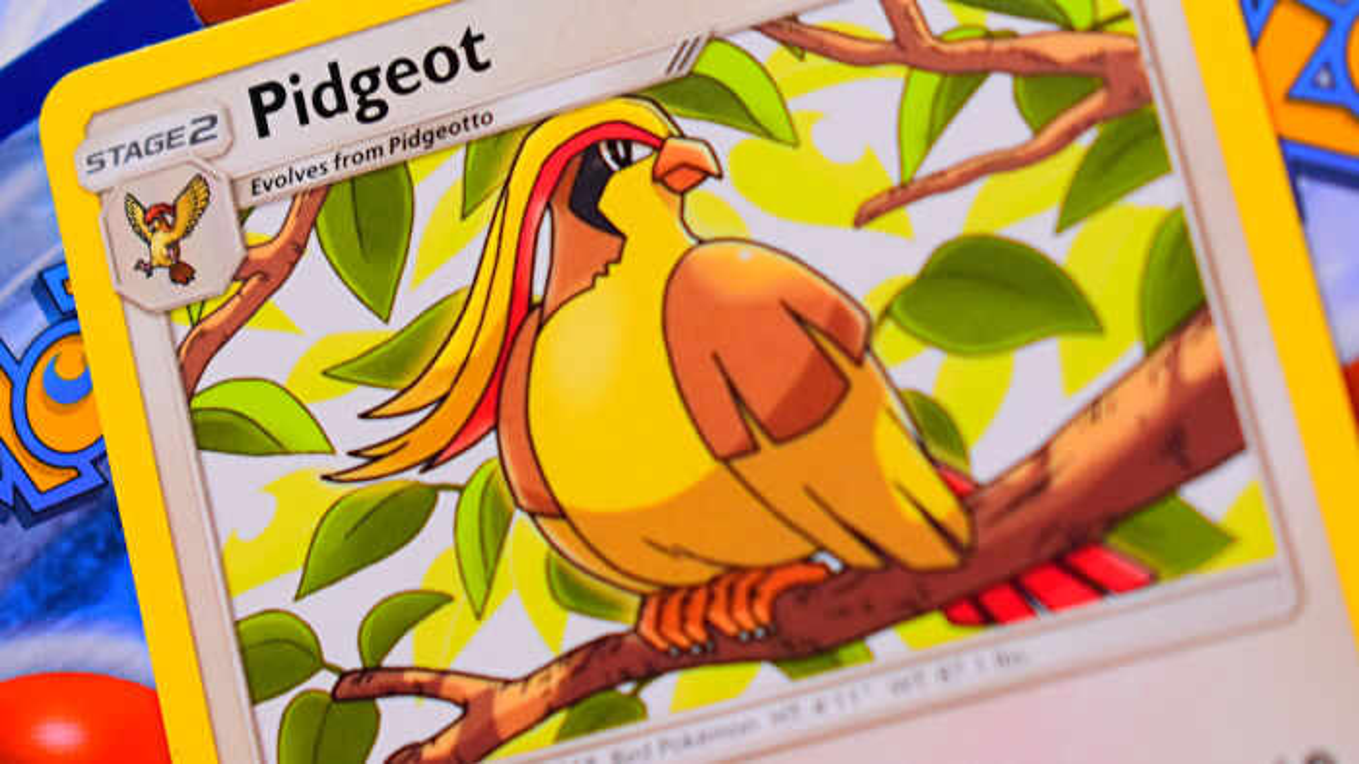 Pokemon Trading Card Game card Pidgeot