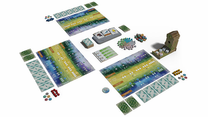 Wingspan board game layout